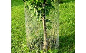 Primer zašite mladega drevesa pred divjadjo (vir: internet)