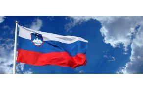 zastava-republike-slovenije-b5639d7e4b.jpg