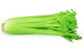 zelena.jpg