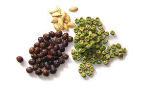 zelenjavni_vrt-semena.jpg