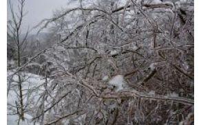 zimskerazmeregrosuplje.jpg