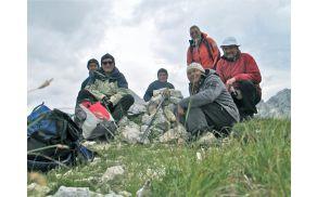 Gasilska na vrhu Zadnjiškega Ozebnika