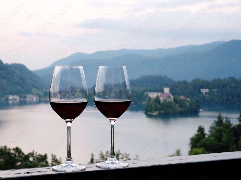 Pokušina slovenskih vin v hišni vinski kleti