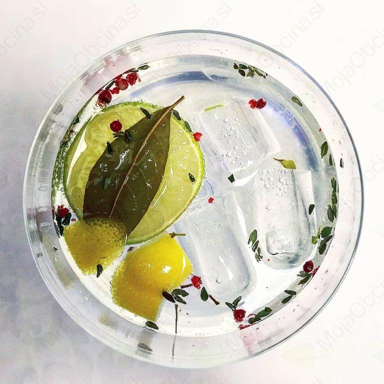 Večerja z gini – spajanje slovenske kulinarike s slovenskim ginom