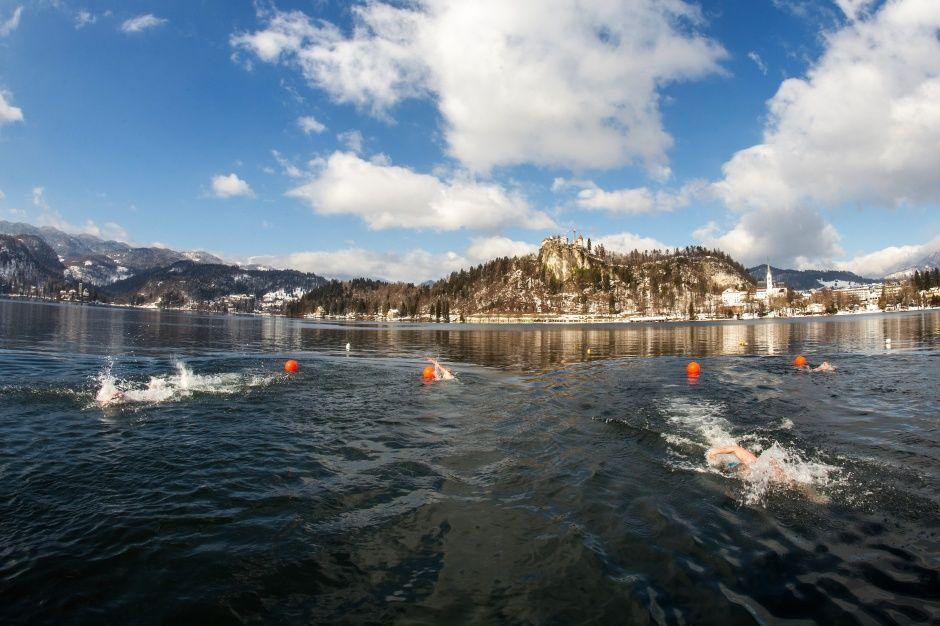 Svetovno prvenstvo v zimskem plavanju 2020