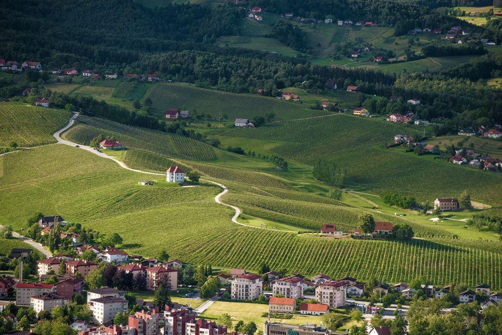 Pogled na vinorodne Škalce