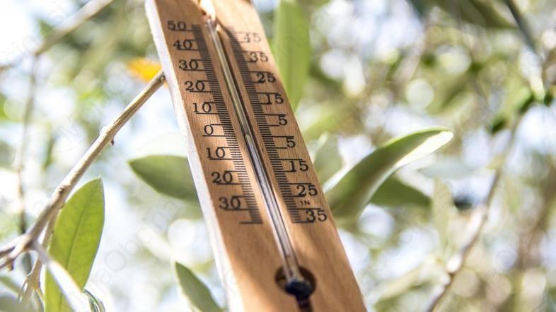 Kako ravnati v vročinskem valu