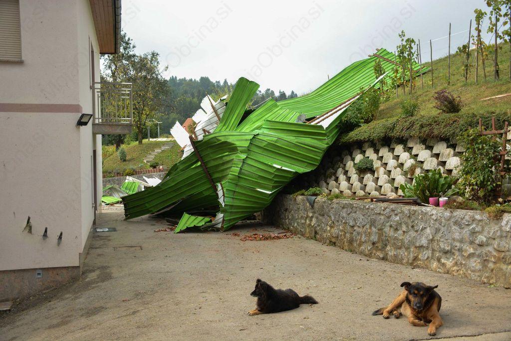 FOTO: Veter odkrival strehe in lomil drevesa