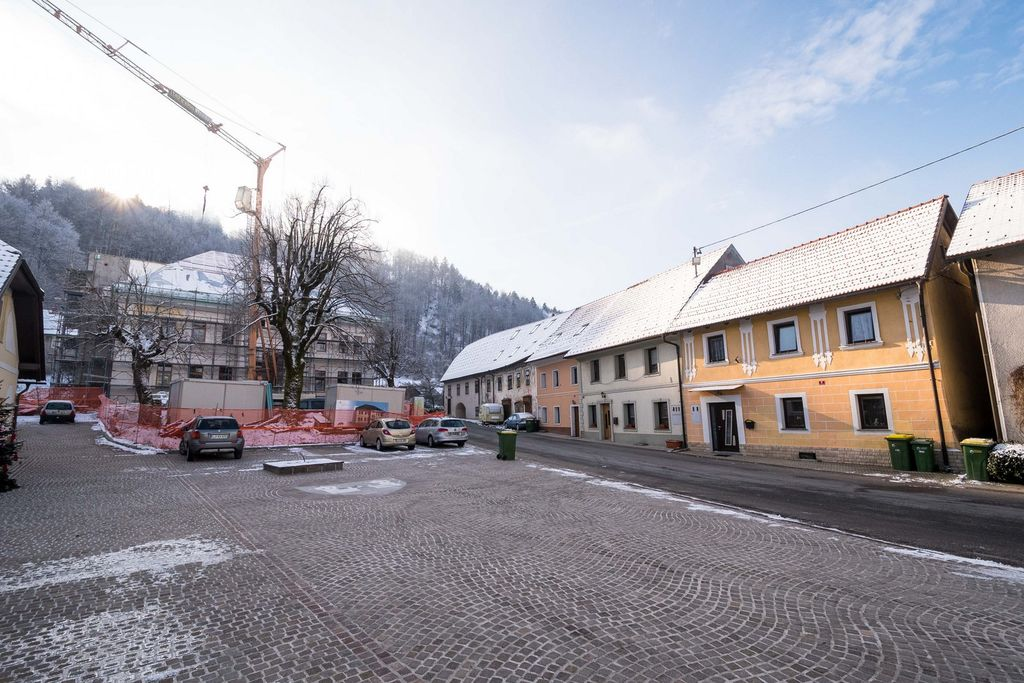 Med pomembnejšimi projekti v letu 2021 odprtje Hiše kranjske čebele v Višnji Gori