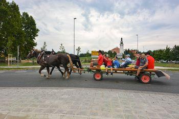 16. pohod Društva prijateljev konj Višnja Gora