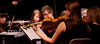 Na odkritju obeležja Kranjski čebeli 100-članska zasedba simfoničnega orkestra glasbenikov iz naše občine