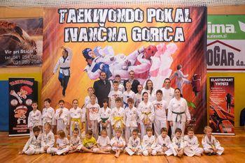 6. Taekwondo pokal Ivančna Gorica