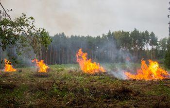 Po vsej državi razglašena velika požarna ogroženost