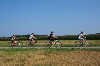 Še letos kolesarska povezava od Samostana Stične do Jurčičeve Muljave