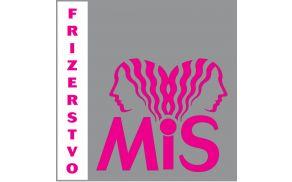 mis-logo_q8.jpg