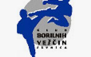 Klub borilnih veščin Sevnica