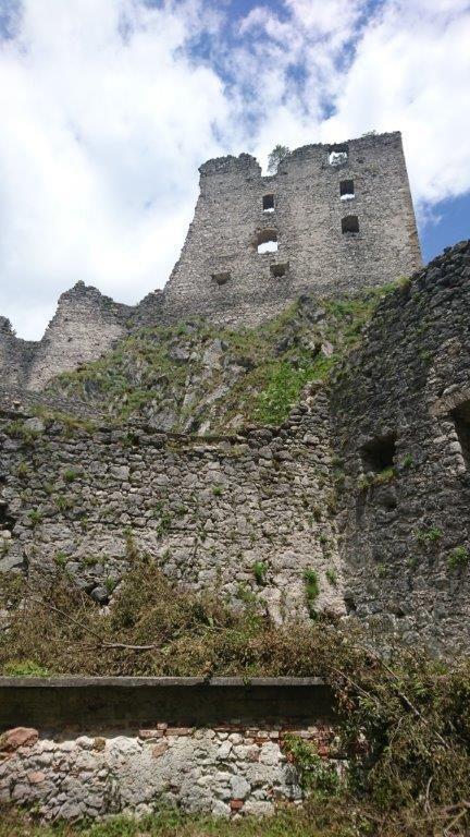 Čiščenje vegetacije na območju gradu Kamen