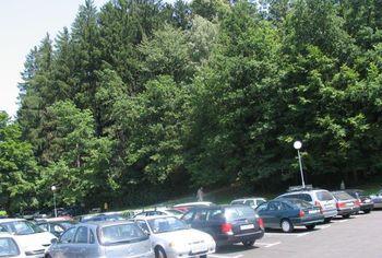 Rezultati ankete o urejanju parkiranja v občini Radovljica
