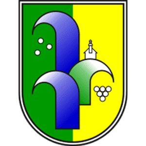 11. Redna seja občinskega sveta Občine Radenci