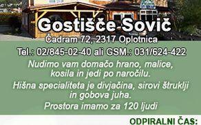 5157_1509093076_gostisce-sovic_300x250_1.jpg