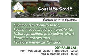 gostisce-sovic_300x250.jpg