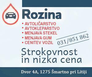 AVTOSERVIS BLAŽ ROZINA S.P.