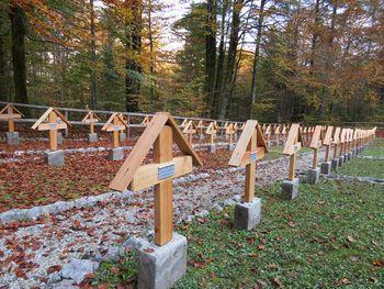 Slovesnost v počastitev žrtev prve svetovne vojne