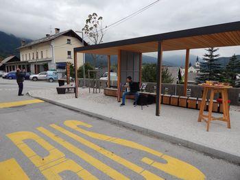 Predlog optimizacije javnega potniškega prometa v Bohinju