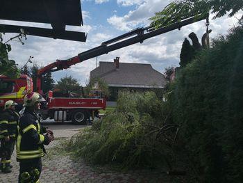 Veter ruval drevesa in odnašal strehe tudi v Bohinju