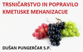 7138_1498822595_grapes-nutrition-facts.jpg