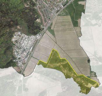 Javna razgrnitev: Odlok o zavarovanju naravne vrednote lokalnega pomena Blatnice - nahajališče močvirske logarice
