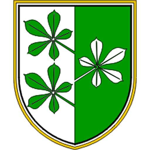 2.dopisna seja Občinskega sveta Občine Kidričevo
