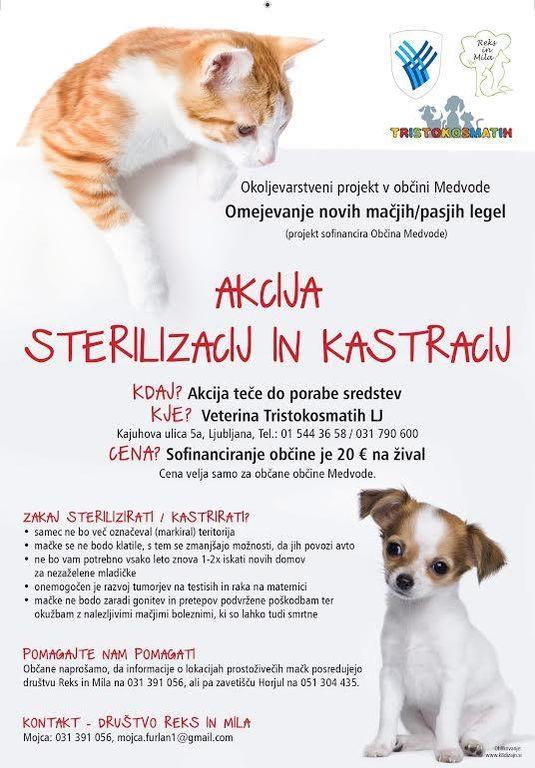 Šesta sezona akcije sterilizacij in kastracij mačk in psov