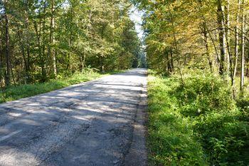 Rekonstrukcija cest Sp. Pirniče - Zavrh, Sora - Trnovec in Seničica - Medno