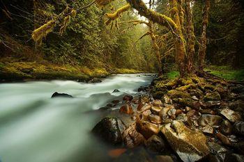 Poziv lastnikom vseh priobalnih zemljišč ob vodotokih v Sloveniji