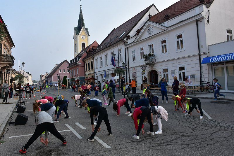 Dan brez avtomobila v Brežicah
