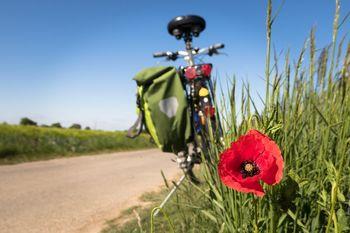 Občina Brežice pridobila evropska sredstva za kolesarsko povezavo Brežice–Dobova