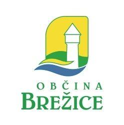 Objava poziva za izbiro najprimernejše rešitve za postavitev pomnika osamosvojitvene vojne Slovenije leta 1991 v Brežicah