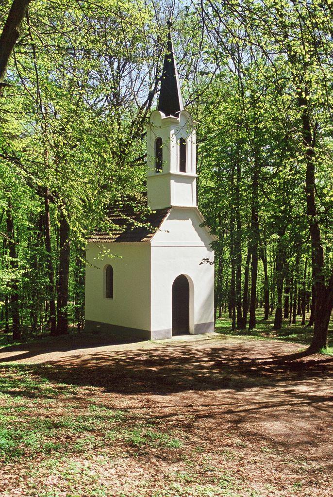 Kapelica Sv.Vida