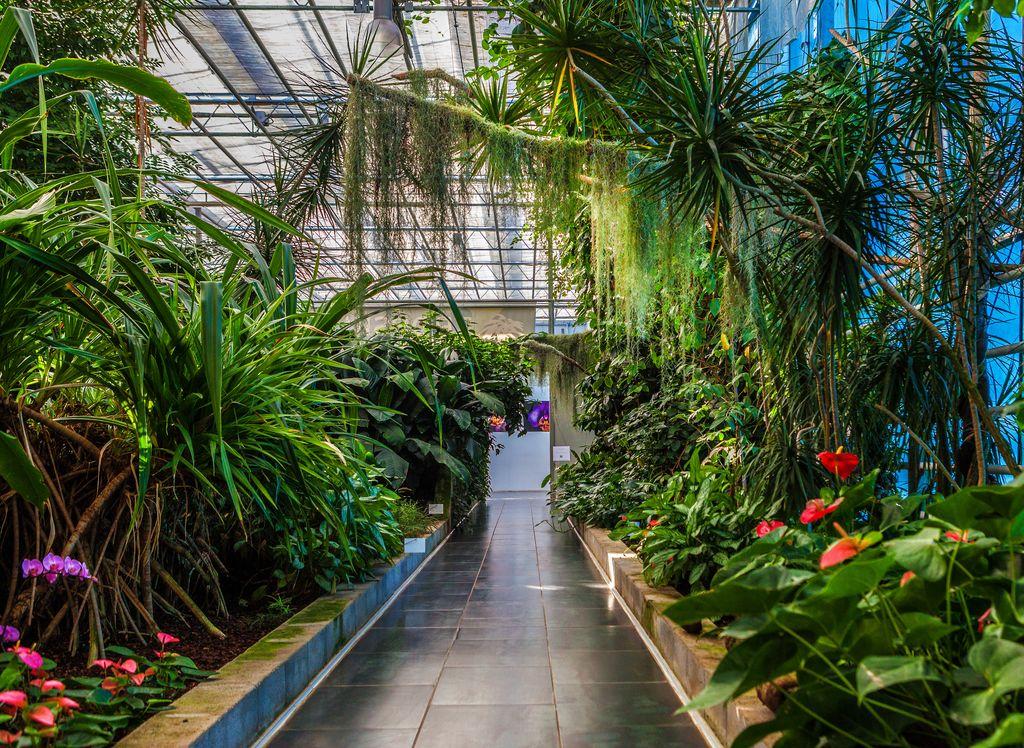 Tropski vrt