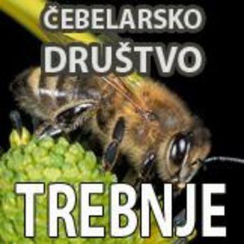 Aktivnosti Čebelarskega društva Trebnje v Glavarjevem letu 2021