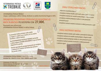 Sofinanciranje sterilizacij in kastracij mačk in mačkov